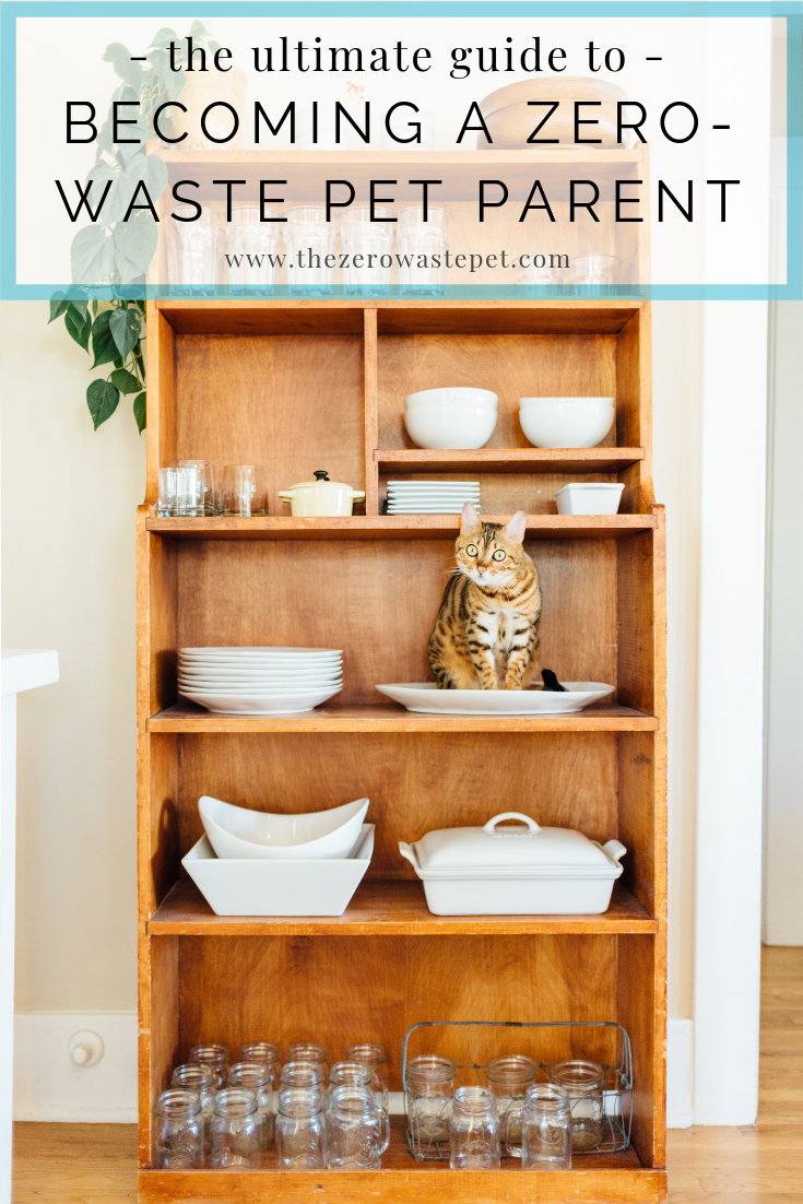 The Ultimate Guide to Becoming a Zero-Waste Pet Parent