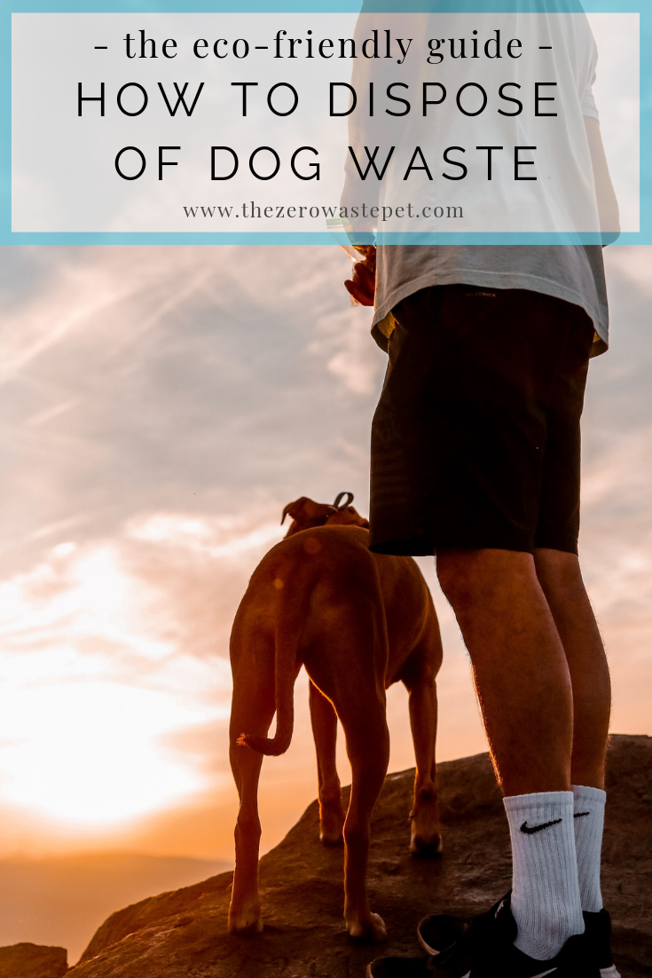 How to dispose of dog waste: The ultimate guide to eco-friendly pet waste management